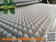 安阳25高30厚排水板车库透水疏水板厂家